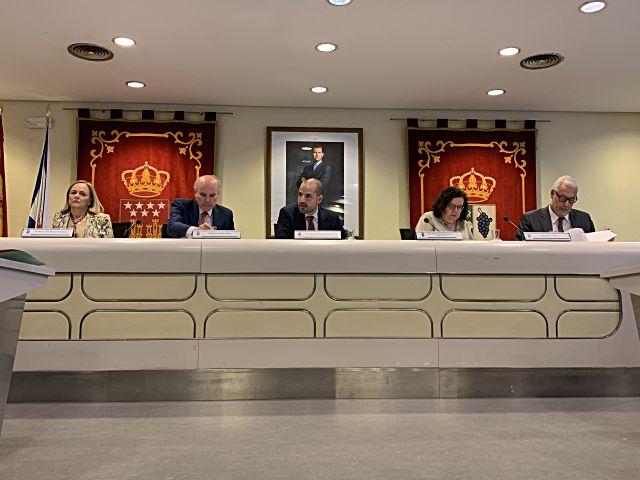 Pleno de Majadahonda julio 2019
