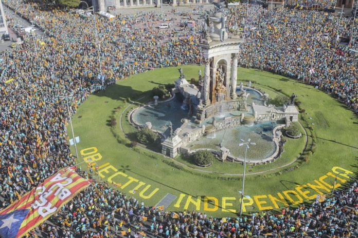 diada barcelona manifestación