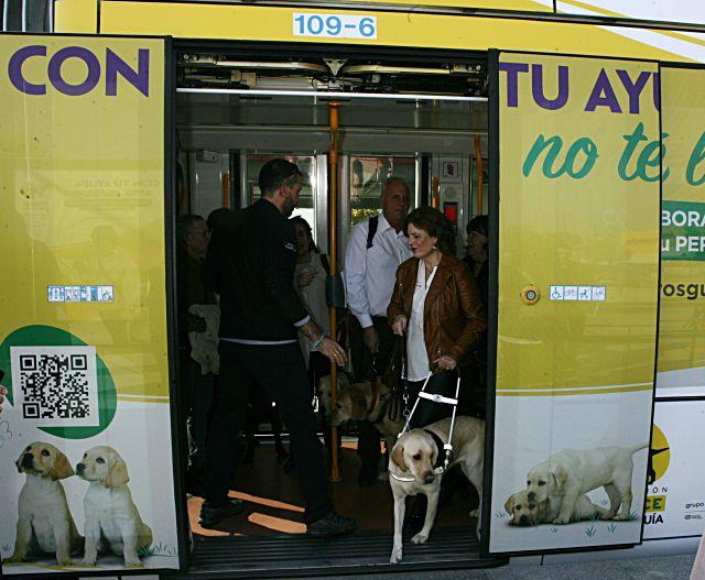 Usuaria de perro guía en metro ligero de Boadilla